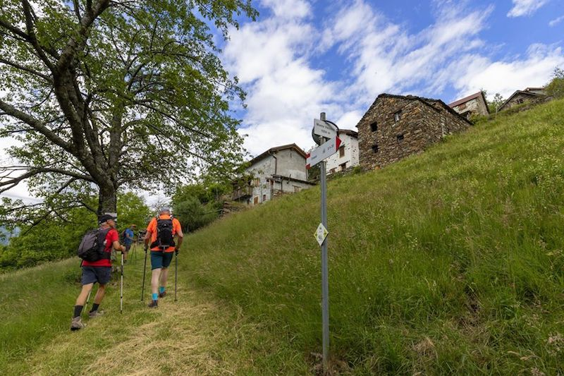 Hiking tours on Lake Maggiore
